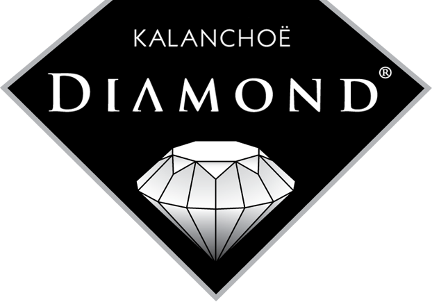 Diamond Kalanchoe logo